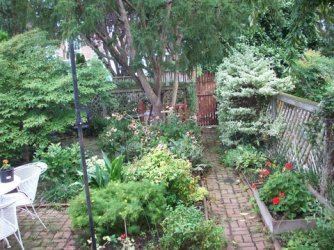 One of our lush, small backyards.