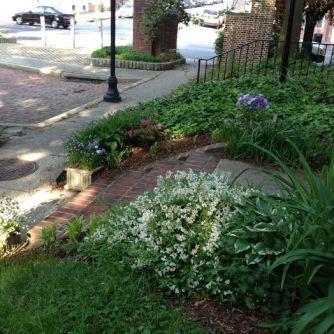Leigh's yard